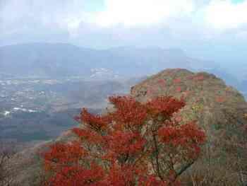 kamiyama_071101.jpg